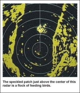 Mariners-radar-257x300